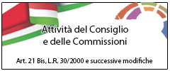 Consiglio Comunale